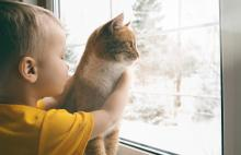 child with cat looking out window at winter weather